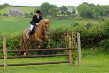 Jodie & 'Tiger' competing at the Letterkenny RC Derby, June 2014